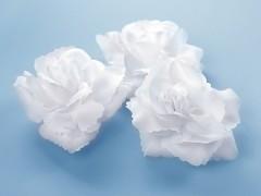Růže nalepovací bílá