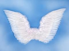 Křídla andělská
