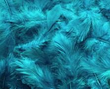 Peří tyrkysově modré