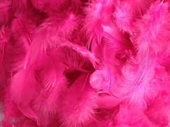 Peří sytě růžové