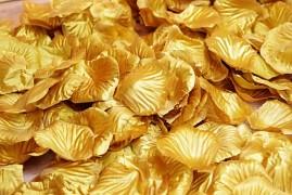Plátky růží medově zlaté