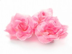Růže nalepovací růžová 24 ks