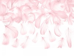 Peří světle růžové 3 g