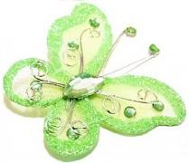 Motýlek světle zelený