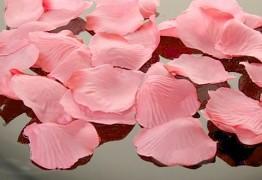 Plátky růží světle růžové