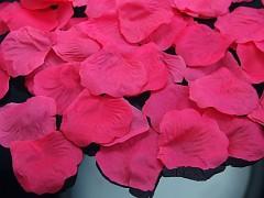 Plátky růží sytě růžové