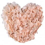 Dekorační srdce světle korálové květy