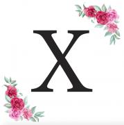 Písmeno X kartička s růžemi
