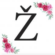 Písmeno Ž kartička s růžemi