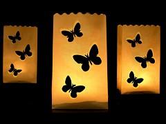 Lampionový sáček Motýlci