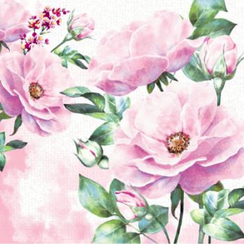 Ubrousky Rose garden 20 ks